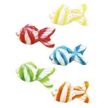 Swirly Fish